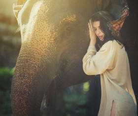 Touch the elephant woman Stock Photo