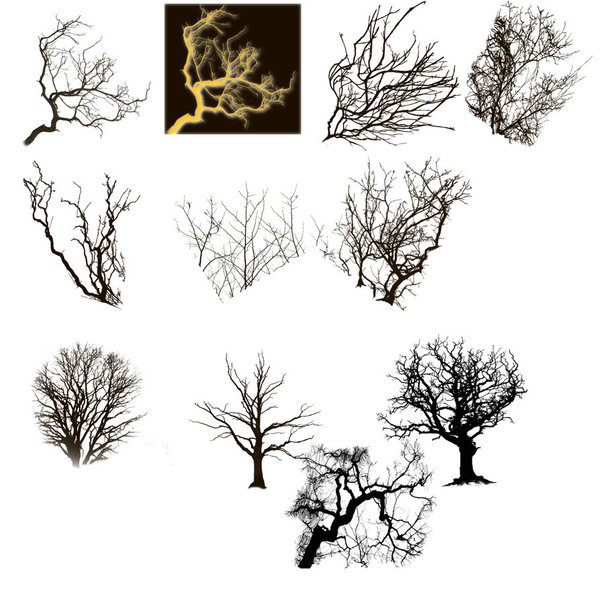 Tree branch photoshop brushes