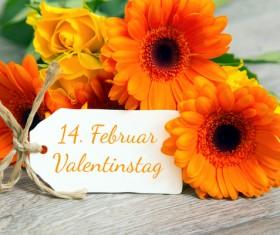 Valentine's Day Flowers Bouquet Stock Photo 03