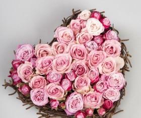 Valentine's Day Rose Love Stock Photo