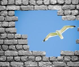Wall holes to freedom Stock Photo 04