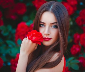 Beautiful girl hand holding red flowers Stock Photo