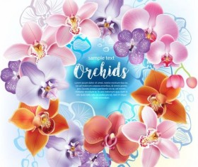 Beautiful orchids flowers vector backgrounds 01