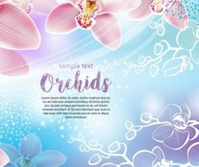 Beautiful orchids flowers vector backgrounds 02