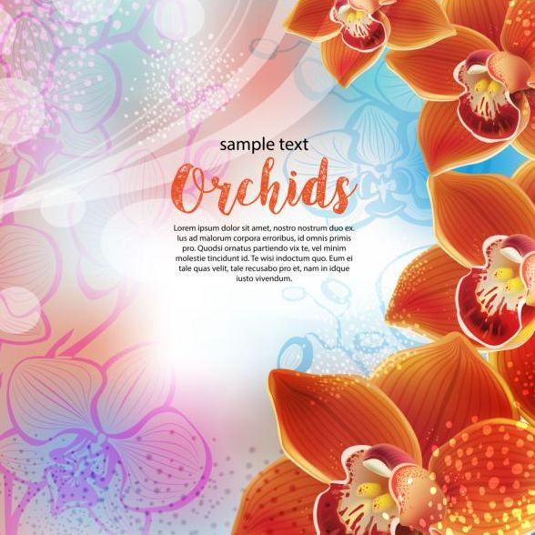 Beautiful orchids flowers vector backgrounds 03