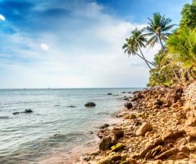 Beautiful tropical beach Stock Photo