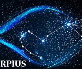 Beautiful zodiac background vector material 01
