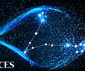 Beautiful zodiac background vector material 02