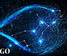 Beautiful zodiac background vector material 03
