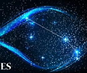 Beautiful zodiac background vector material 04