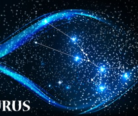 Beautiful zodiac background vector material 06