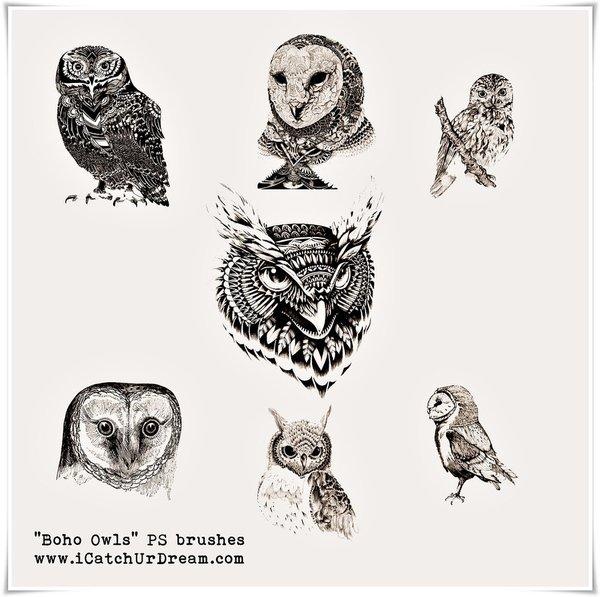 Boho Owls photoshop brushes