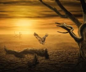 Desolate dry land and birds Stock Photo