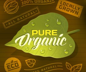 Eco with organic labels vector material