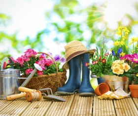 Flower hat and boots on the desktop HD picture