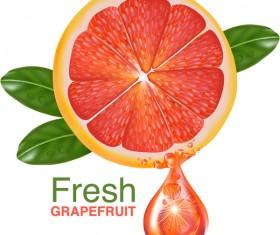 Fresh grapefruit drink poster vector 06