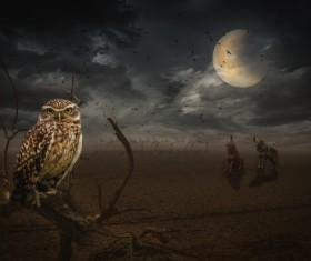 Full moon under the animal Stock Photo