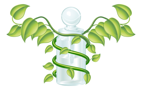 Green leaf and glass container vector