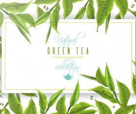 Green tea frame vector material