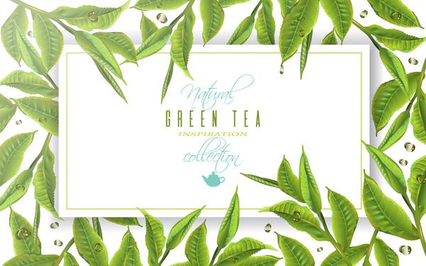 Green tea frame vector material free download