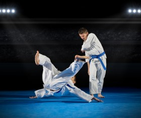 Judo game HD picture 02