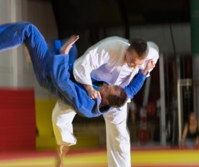 Judo game HD picture 03
