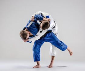 Judo game HD picture 04