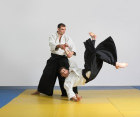 Judo game HD picture 05
