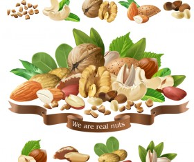 Nuts labels vector 02