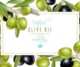 Olives frame vector material
