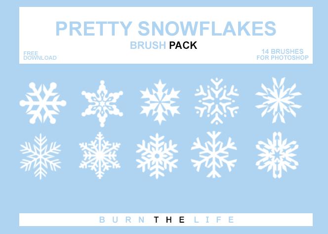 Pretty Snowflakes photoshop brushes