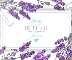 Purple flower frame vector