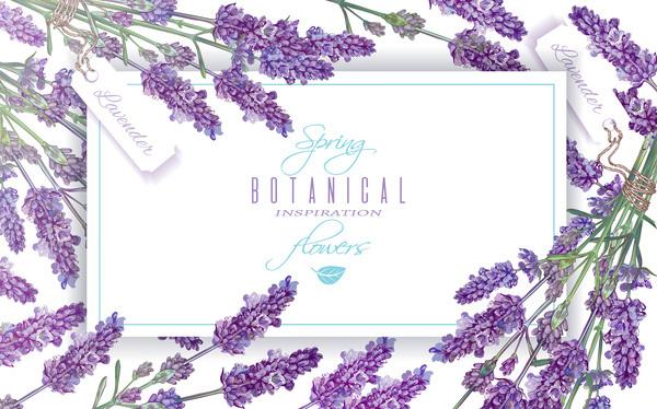 Purple flower frame vector free download