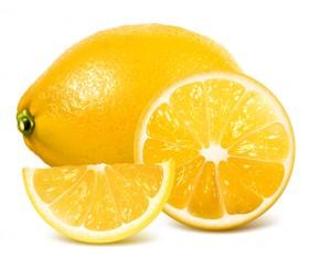 Realistic lemon with slice vector