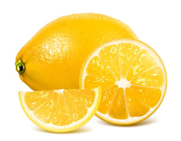 lemon vector free download - photo #41