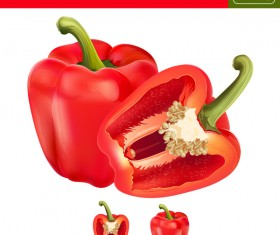 Red pepper with slice realistic vectors