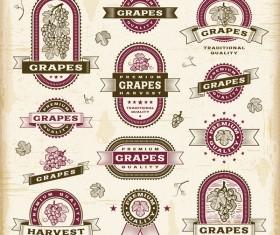 Retro grapes labels set vector