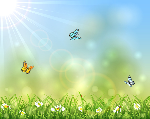 Sunny Background With Butterflies Design Vector Vector