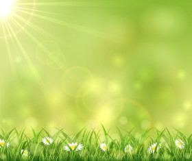 Sunny background with grass and flowers vectors material