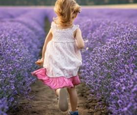 The little girl running on lavender farmland Stock Photo 02