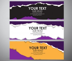 Torn paper banner set vector 01