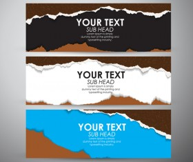 Torn paper banner set vector 02