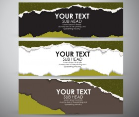 Torn paper banner set vector 03