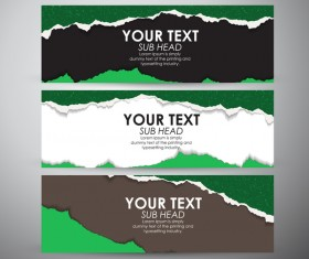 Torn paper banner set vector 04