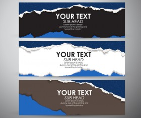 Torn paper banner set vector 05