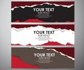 Torn paper banner set vector 06