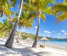 Tropical Beach Stock Photo 01