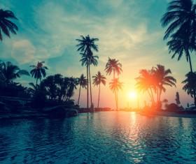 Tropical Beach Stock Photo 04