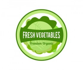 Vegetables fresh badge vector