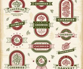 Vintage cherry labels set vector